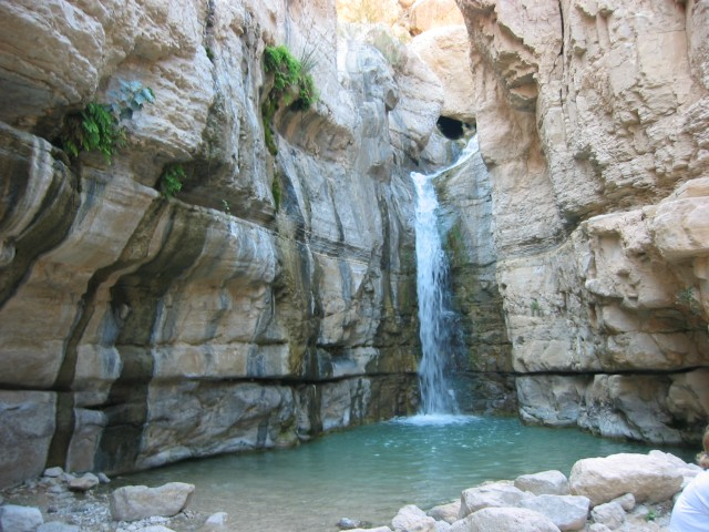 ein gedi israel south david sussman